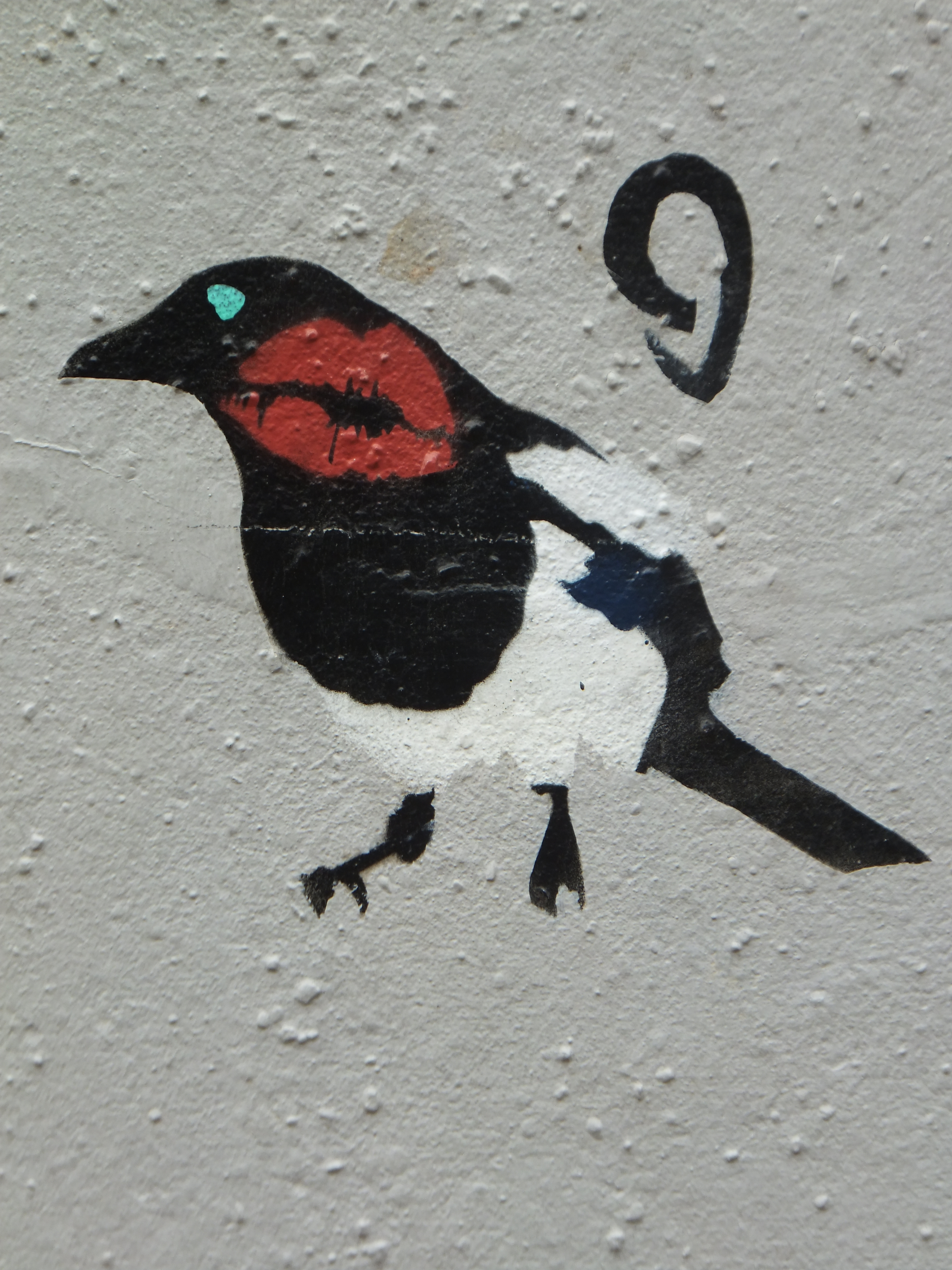 μελαχροινή μεγάλο πουλί μαύρο